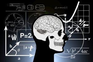 Gehirn-Forschung